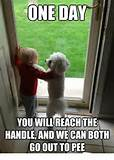 All funny pictures: Funny Friendship Qoute Images