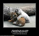 ... 4photos friendship funny friendship pictures funny friendship pictures