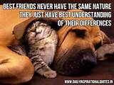 ... have best understanding of their differences ~ Inspirational Quote