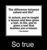 ... life-funny-the-difference-between-school-and-life-quotes-on-funny-life