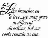 great family quote for photo wall display...imagine tree branches with ...