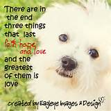"Inspirational Animal Quotes – ""Faith,Hope & Love"" 