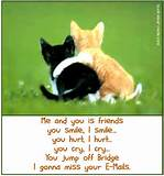 Funny I love you Quotes | I Love You-Picture And Quotes